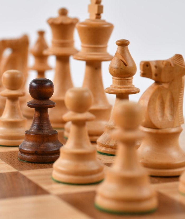 L'art de jouer aux échecs - Moovandji
