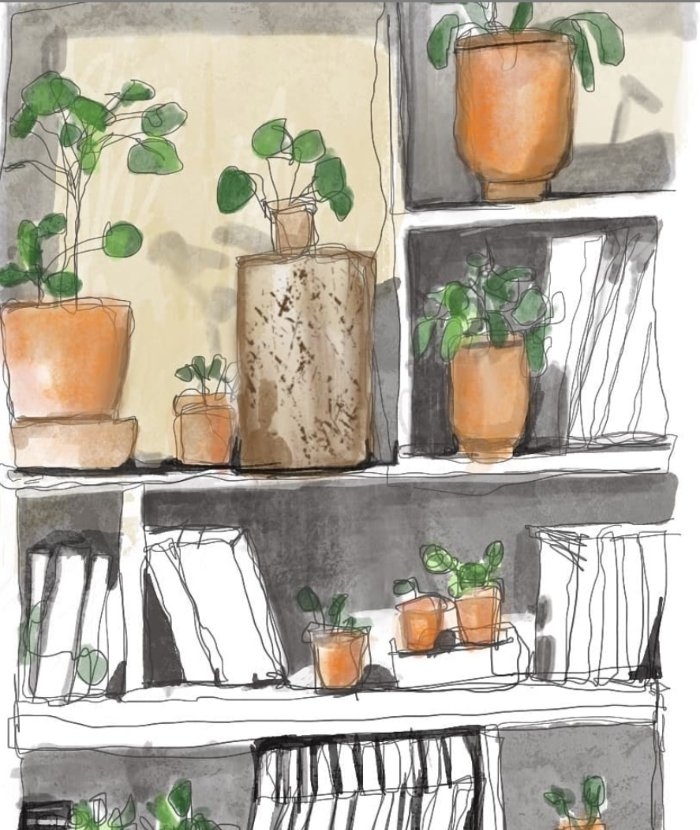The art of illustrating with watercolor - Moovandji project